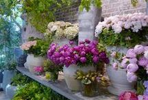 Floral~Gardening