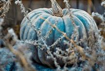 Fall~My Favorite