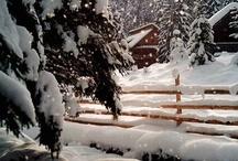 Winter~Brrrr