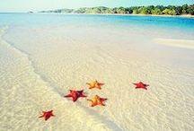 Sand Between My Toes... / by Sherri DeSorcy