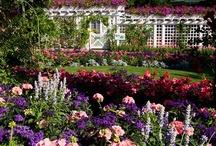 Floral~English Gardens
