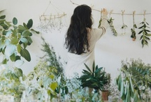 Garden & Patio Space / by Desra Lea