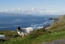 Wanderlust- Ireland Vacation / Ireland- Homeland bound / by Stephanie Dearman