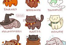 Cat version