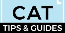 Cat Tips + Guides