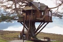 Treehouses....
