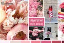 Flowers / by Mio Creative Design