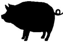 Pork Recipes / by Chad Milner