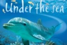 Under The Sea / by Deborah Davis