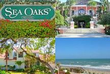 SEA OAKS Vero Beach / Barbara Martino-Sliva Realtor with Dale Sorensen Real Estate.  Fabulous ocean to river gated island lifestyle community in Vero Beach Florida.  Residents enjoy their park-like setting with resort amenities.  Sea Oaks is know for it's world-class tennis club, beach club and community marina.  Here you will find luxury oceanfront condos, tennis villas, townhomes and a variety of single family homes.            Contact me for information  772-321-4484