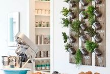 Eco-friendly Fun / How to incorporate an eco-frienldy lifestyle into your home.