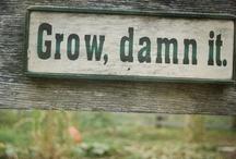 gardening ... / by dal
