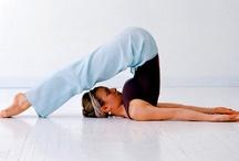 Yoga / by Roxie