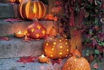 Fall -- My Favorite Season