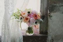 On My Windowsill / I love pretty things on my windowsill.  / by Patty Dahl