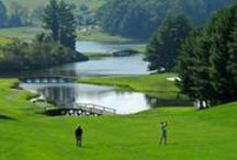 Golf Courses and Golf Resorts / Hit the links!