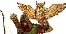 ⚔ Companion • Owl