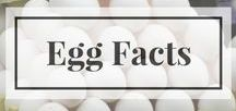 Egg Facts / Information about egg nutrition, safe handling, egg carton labels, parts of the egg, common myths and more!
