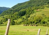 Campagne / Country Campagne Landschaft Paysage