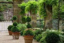 Garden Views / My idea of heaven.....must be a beautiful garden!   / by Nella Miller Design