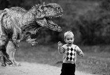 Funny / by Brandi Johnson