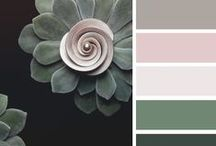 Color Palette / by Nic Nac P