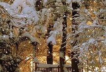 Christmas / by Brandi Johnson