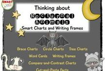 Nocturnal Animals / Kindergarten ideas for learning about nocturnal animals.