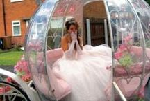 Quinceañera / Decorations and dress for you quinceañera!  / by PromGirl