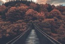 scenery photography