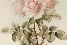 Pink/Shabby Cottage Chic Style / by Gayle Montayo
