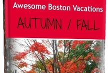 Fall Foliage / Boston is just glorious in the autumn/fall season. The colors, the smell of the air, the crunch under your feet...