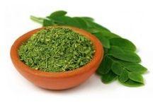 Chás Medicinais - Medicinal Teas / Chás e Plantas Medicinais