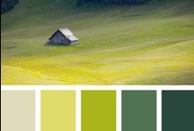 Color / by Ashley Shaffer