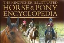 Horse Resource and Training / Non-Fiction Library on horses and ponies PLUS