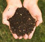 Veganic Horticulture/Gardening