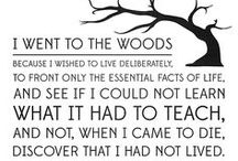 Transcendentalism / American transcendentalism was a philosophical movement that developed during the 1800's in New England.  Central figures included Ralph Waldo Emerson, Henry David Thoreau, Bronson Alcott and Margaret Fuller.