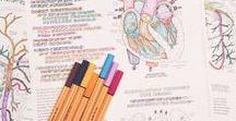 ♥ Organization & Study ♥ / ♥ Tablica do motywowania do nauki i organizacji ♥