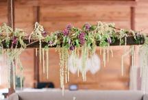 Wedding Flowers / by Ashley Foley