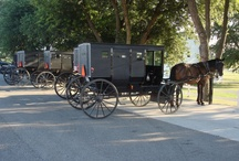 All Things Amish & Mennonite / Photos taken in Amish and Mennonite country.