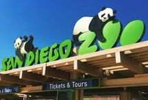 San Diego / Travel ideas for San Diego- what to do, what to see, where to eat, and where to stay.