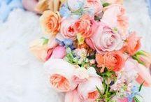 Bride Bouquets & Boutonnieres / by Micaela Hotham