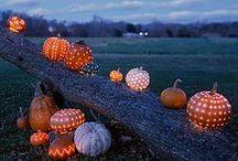 Halloween / by Micaela Hotham