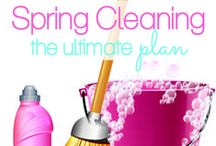 Spring Cleaning / by Late Lettings