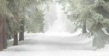 Winter Softness