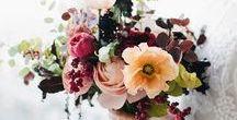 Blumensträuße / Flower Bouquets / Blumen, Blumensträuße, Flower, Flowers, Flower Bouquets, Bouquets, Rosen, Brautsträuße, Sträuße, Inspiration, Inspire, Schnittblumen, Frischhaltung, Floristin, Tipps, Hacks