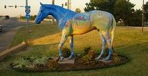Horses in Shawnee / Shawnee selected horses as the public art project to represent the spirit of Shawnee.  We are home to the International Finals Youth Rodeo every July. There are nearly 30 horses in town so grab a friend and a list (which can be found on our website) and make an afternoon of it. Be sure to take at least a selfie or two!