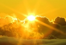 ~Sunshine Yellow~ / by Barbara Freeman