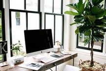 Office Mood Board / Lots of light, glass walls, warm, comfortable, clean, minimalist, colorful, hardwood floors, and lots of indoor greenery.