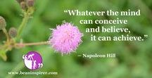Motivational Quotes / Be An Inspirer - Spread the Inspiration Visit - www.beaninspirer.com for more.